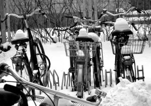 2010_Overig005_Winterfietsen_zw